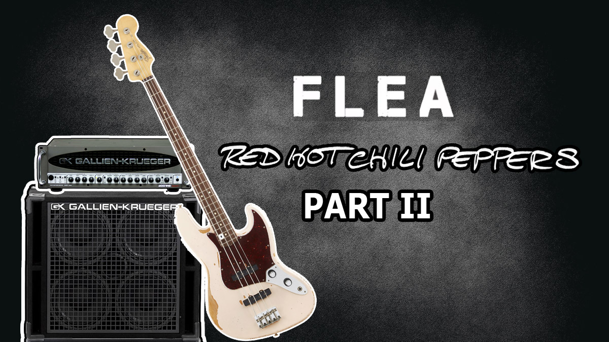 Fleas Amplifier Rig And Effects Pedals Know Your Bass Player 2